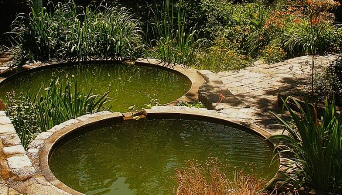 Allestire un laghetto per pesci in giardino in giardino for Creare un laghetto in giardino