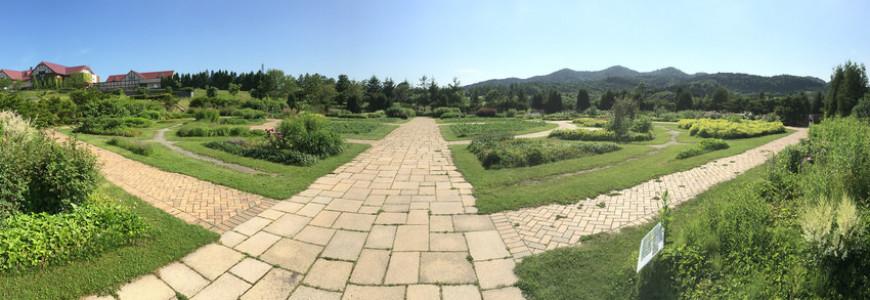 Vialetto da giardino
