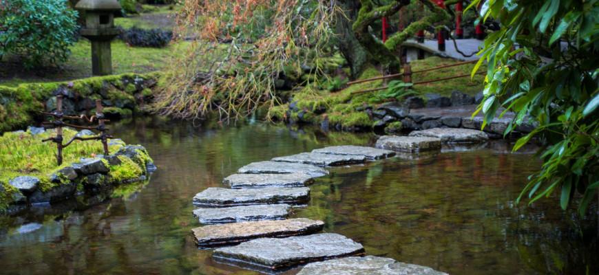 Allestire un laghetto per pesci in giardino in giardino for Laghetto giapponese