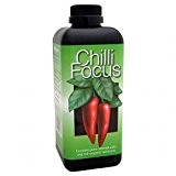 Chilli Focus 1 Lt - Grow Technology