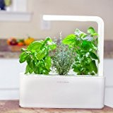 Click & Grow Smart Herb Garden (Bianco)